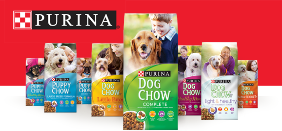 Cat Dog Food Brands