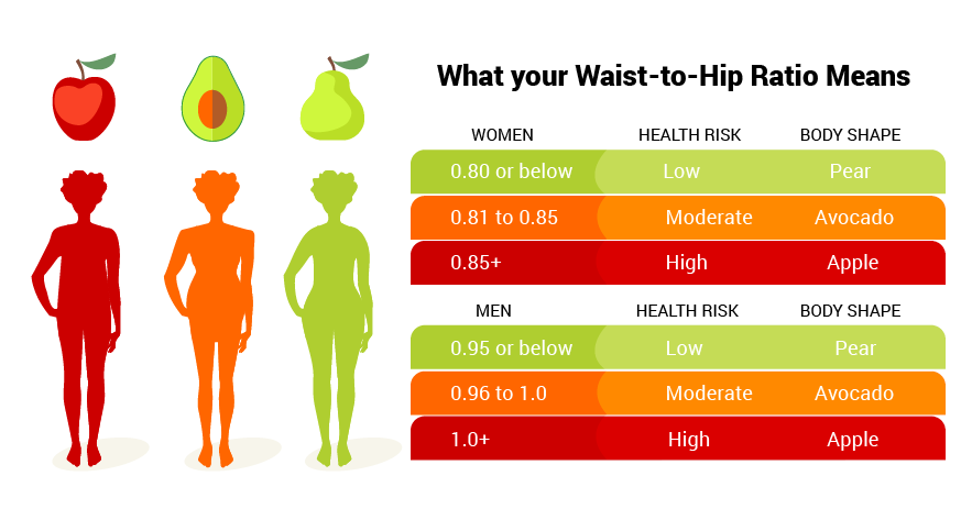 body fat percentage healthy male